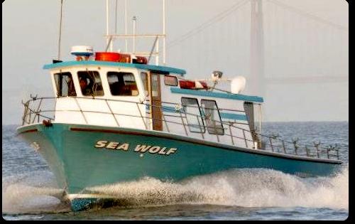 Sea wolf sportfishing emeryville ca for Deep sea fishing bay area